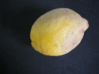 limone-allupatura-byregione-campania