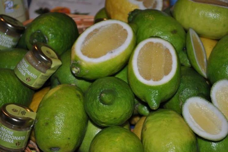 limone-interdonato-messina-igpdistretto-agrumi-sicilia07ott2015