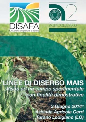 linee-diserbo-mais-disafa-agricola2-000