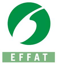logo-Effat