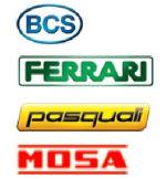 logo-Gruppo-BCS