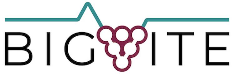 logo-big-vite-giu-2021