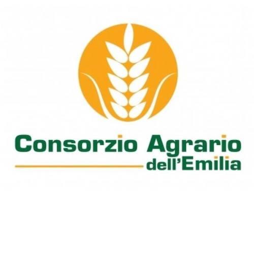 logo-consorzio-agrario-emilia1