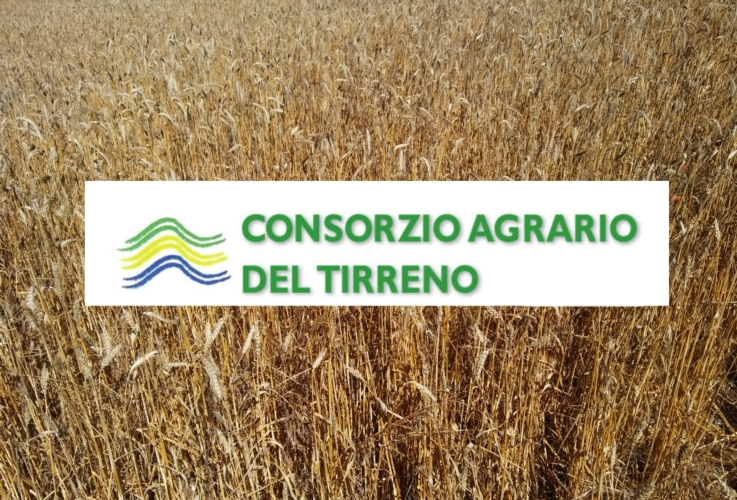 logo-consorzio-agrario-tirreno-by-consorzio-agrario-del-tirreno-jpg