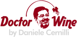 logo-doctorwine