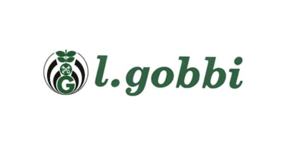 logo-lgobbi-fonte-lgobbi