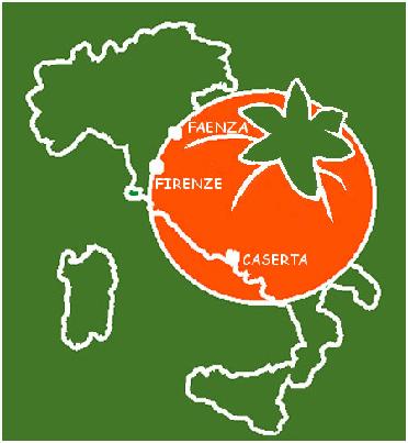 logo_kaki