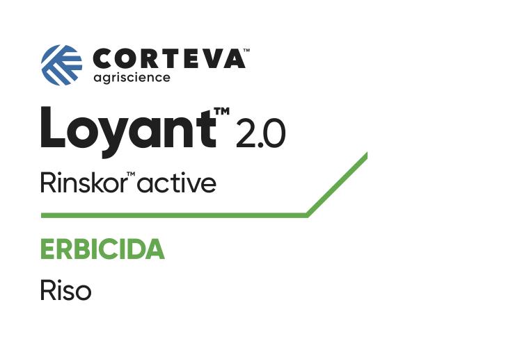 loyant-20-rinskor-mar2020-fonte-corteva.png