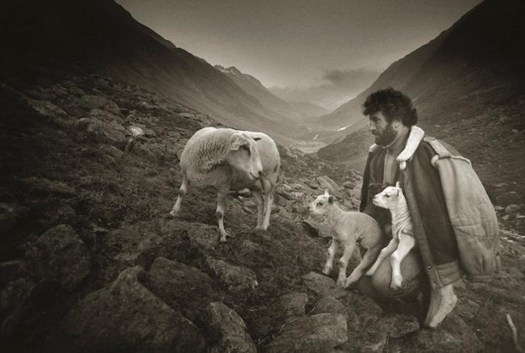 luigi-le-berger-il-pastore-e-gli-agnelli-foto-di-marcel-imsand-750