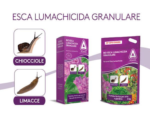 lumachicida-ferramol-fonte-kollant-adama-casa-giardino