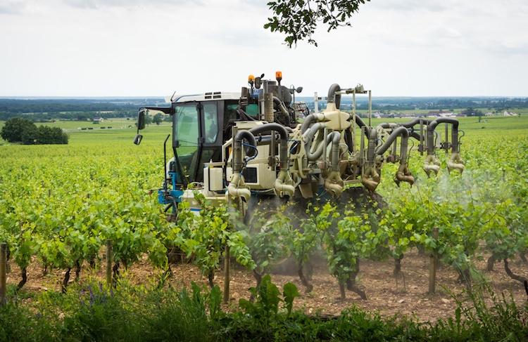 Meccanizzazione in viticoltura: tutta da scoprire con InMoMeVi
