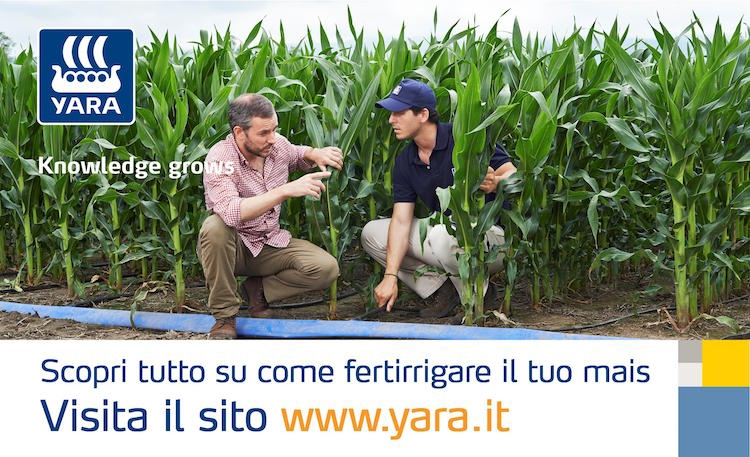 mais-fertirrigazione-yara-20160517