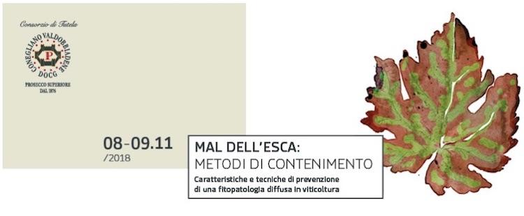 mal-dell-esca-conegliano-20181108