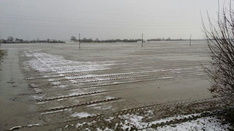 maltempo-feb15-campi-cipolla-appena-seminata-imola-fonte-confagricoltura-bologna.jpg