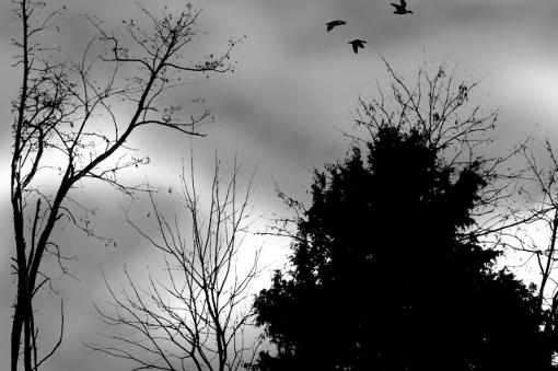 maltempo-nubi-nuvole-fonte-coldiretti.jpg