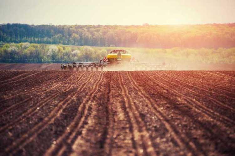 mappe-semina-agricolus-2021.jpg
