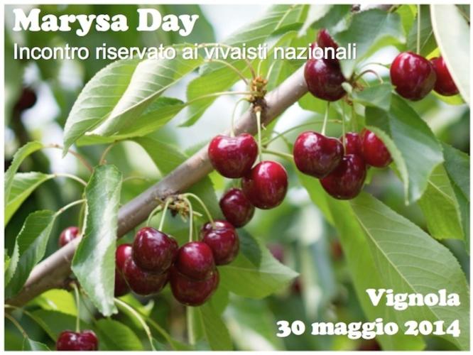 marysa-fonte-universita-bologna.jpg
