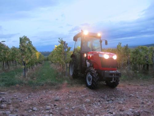 massey-ferguson-trattori-specialistici-vigneto-2011-gamma-3600