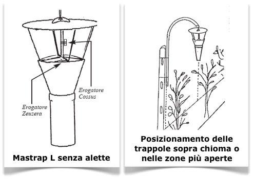 mastrap-l-senza-alette-posizionamento-isagro-italia-riff-98