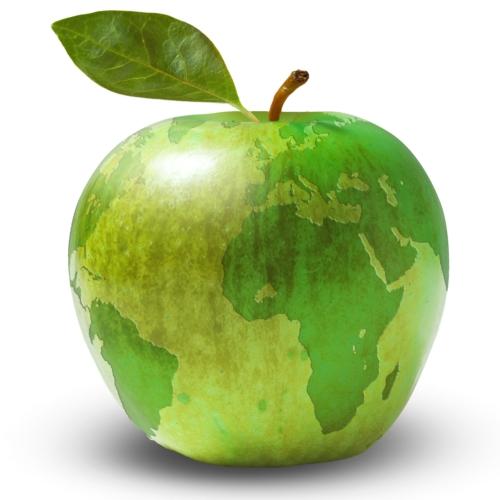 mela-premio-mondo-fonte-caab-bologna-award
