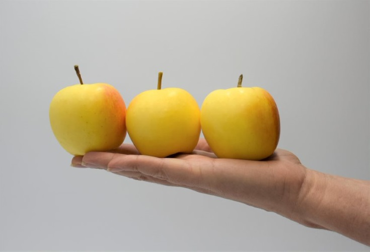 mela-snack-progetto-rivoira-vip-vog-fonte-fruitecom-20200928