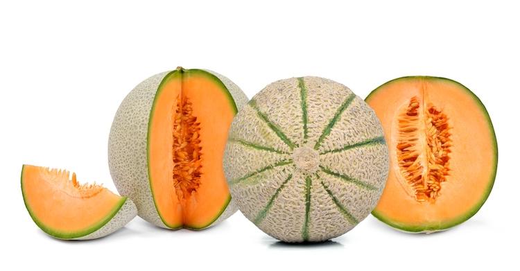 Risultati immagini per melone