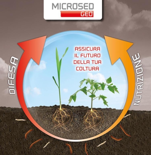 microseed-geo-fonte-eurotsa