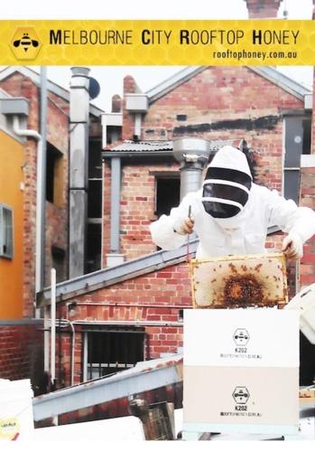miele-sui-tetti-Melbourne-City-Rooftop-Honey_apicoltore.jpg
