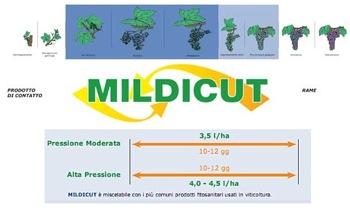 mildicut-biolchim-modalita-di-azione-schema