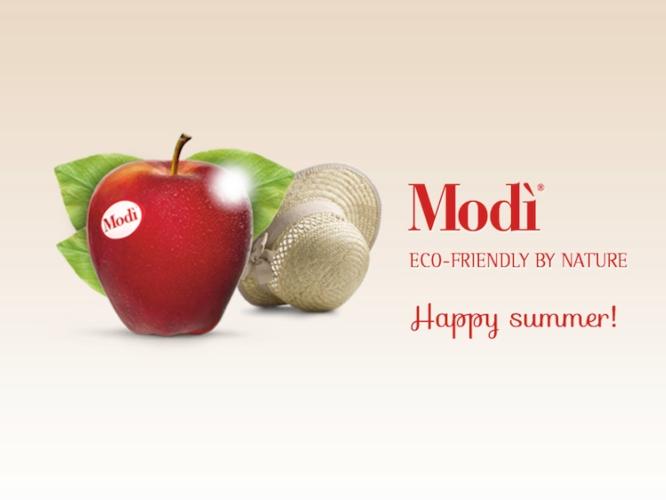 modi-summer