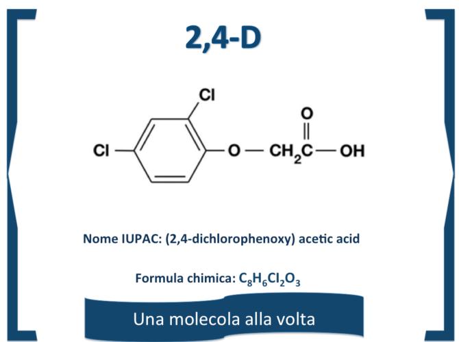 molecola-mese-2-4-d.png