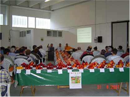 mostra-pomologic-Assam-2008