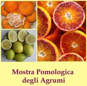 mostra-pomologica-agrumi-febbraio2011