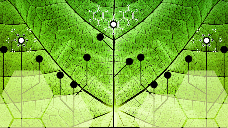 nanotecnologie-nanotecnologia-tecnologia-by-giroscience-fotolia-750x422