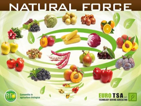 natural-force-fonte-euro-tsa1