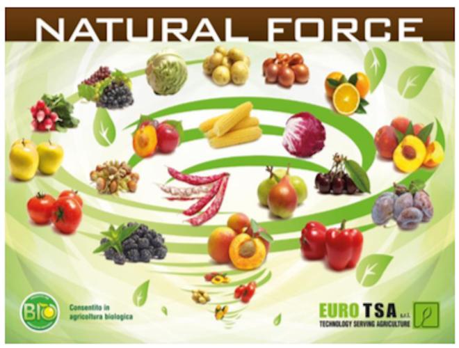 natural-force-fonte-euro-tsa2