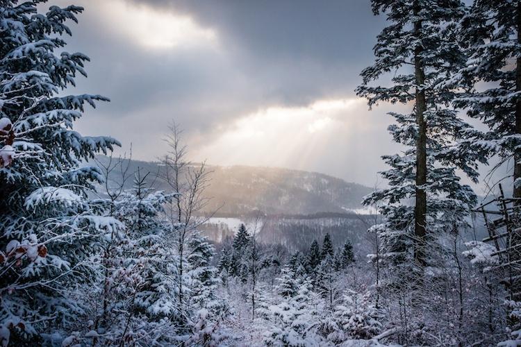 neve-maltempo-inverno-by-marcin-fotolia-750