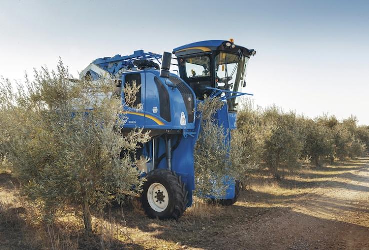 newholland-braud-9090x-oliveto