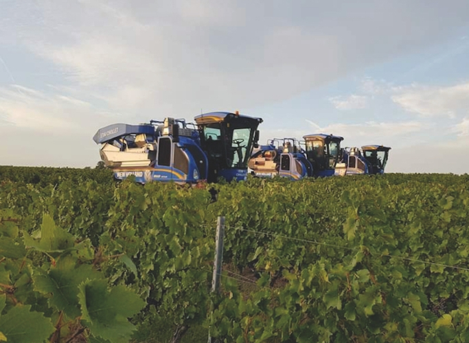 New Holland: upgrade per le vendemmiatrici Braud