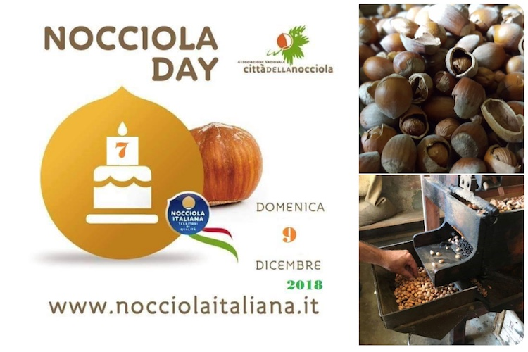 nocciola-day-italiana-9-12-2018-fico-eataly-world-byconsorziood