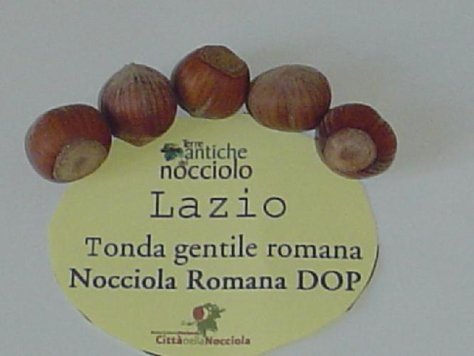 nocciolo-cultivar-tonda-gentile-romana-by-cittadellanocciola.jpg