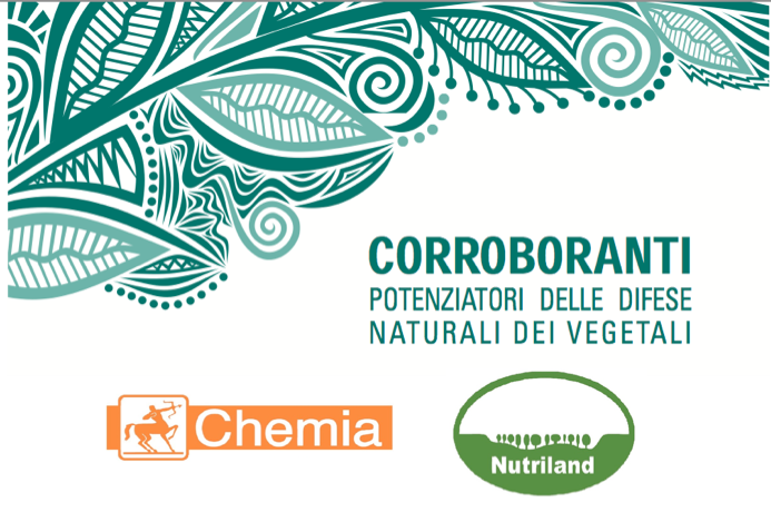 nutriland-chemia-corroboranti.png
