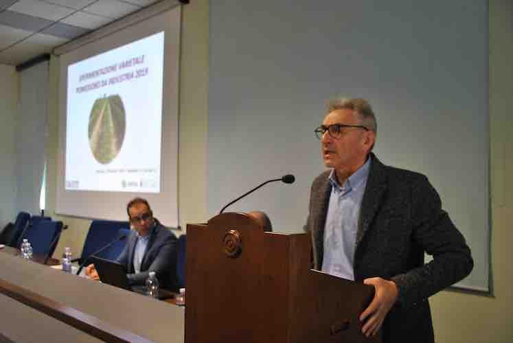 oi-pomodoro-industria-nord-italia-rabboni-presidente-presentazione-progetti-attivita-20191203.jpg