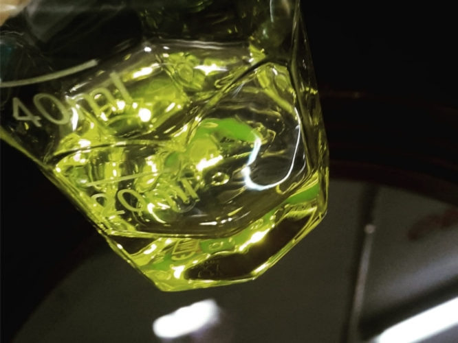 olio-extravergine-analisi-by-clemente-pellegrini-anga-confagricoltura-jpg