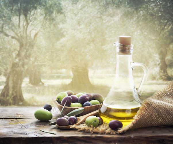 olio-oliva-olive-olivi-ulivi-by-hitdelight-adobe-stock-750x500