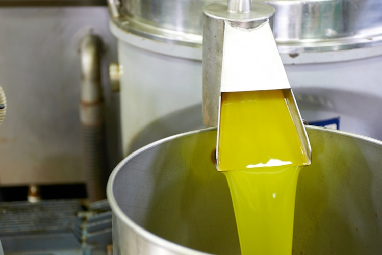 olio-oliva-olive-produzione-by-vkara-fotolia-7501