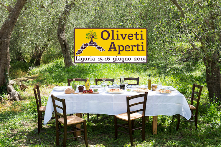 oliveti-aperti-fonte-qualivita-2019