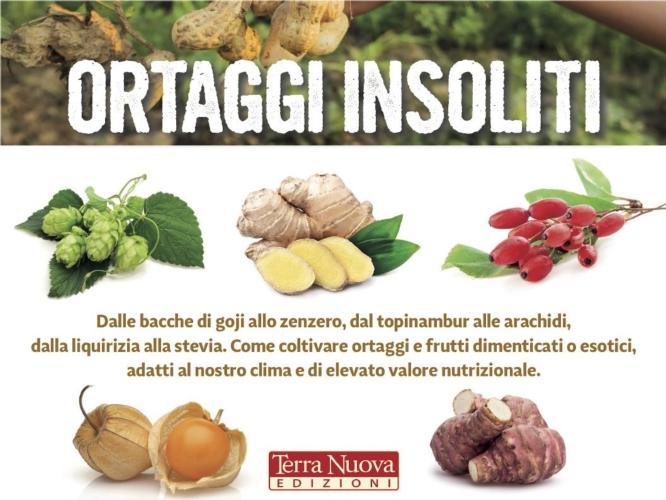 ortaggi-insoliti-copertina-by-terra-nuova-edizioni-jpg.jpg