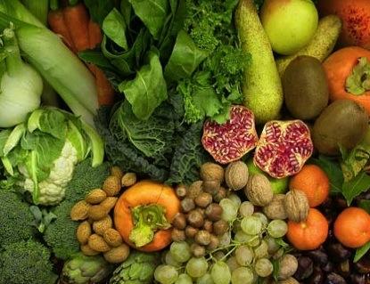 orticoltura-frutticoltura-frutta-verdura