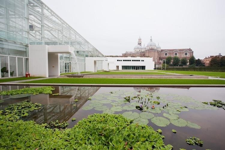 A padova inaugura il nuovo orto botanico con specie vegetali